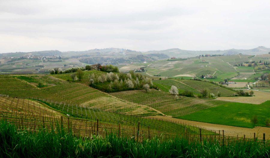 Piemonte: In crescita il mercato delle seconde case nel Monferrato, nelle Langhe e nel Roero.